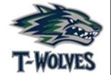 T-Wolves logo