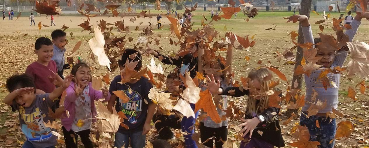 Students playing in Fall leaves